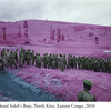 RichardMosse06.jpg